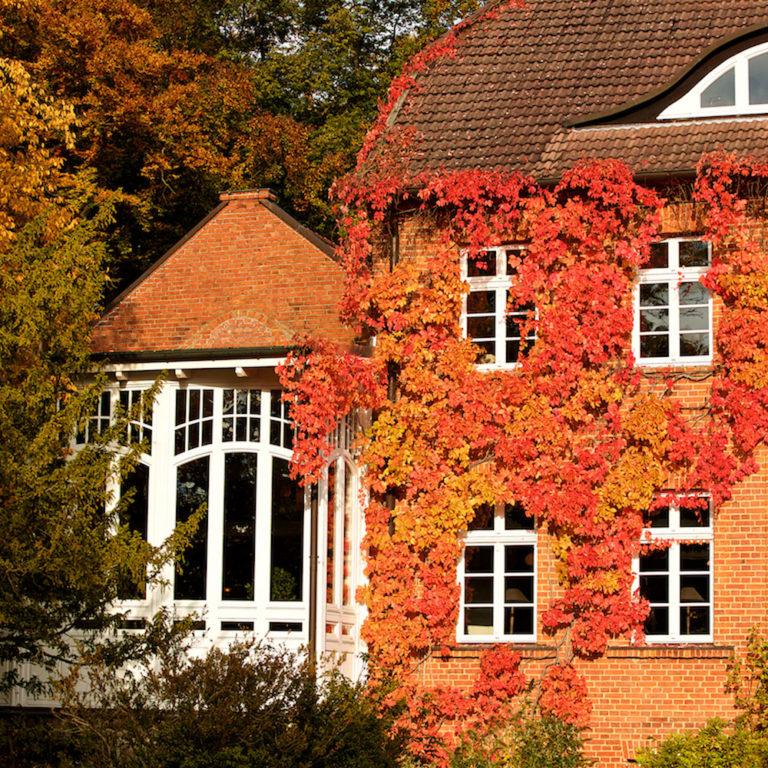 Angebote im Schloss Basthorst